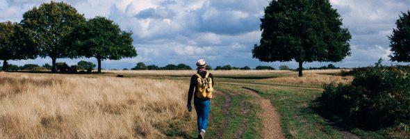 Fit blijven in coronatijd: wandelen!